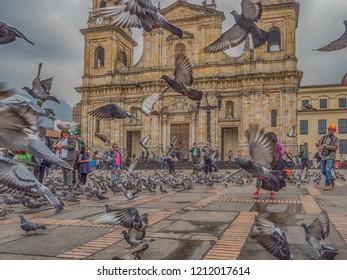 Bogota, Colombia - September 13, 2013: Pigeons and tourists on Bolivar Square in Bogota. La Candelaria.