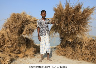 BOGRA - BANGLADESH - DECEMBER 27, 2017: Unidentified farmer of the chars people on the riverbank of the Jamuna River on December 27, 2017 in Bogra, Bangladesh