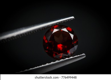 Bohemain Garnet.Dark red gemstone.Beautiful round shape gem.stone in tweezers.Focus on the center of the image.The background is not smooth.