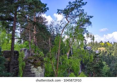 Bohemian Paradise, Cesky Raj, Czech Republic - Forest landscape and nature in the Prachov Rocks (Prachovske Skaly). - Shutterstock ID 1045872910