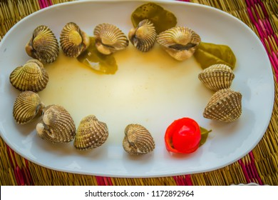 Boiled blood clams on white dish with red tomato background and copy space for your text. Steamed cockles with red tomato and copy space. Blood cockles or blood clams (Tegillarca granosa) background.