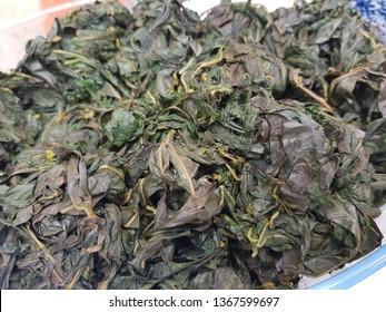 Boiled cassava leaves. Daun singkong rebus.