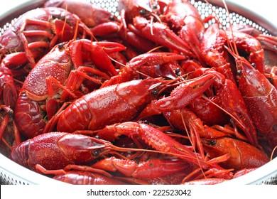 boiled crawfish clayfish party