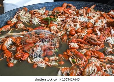 Boiled crawfish, fried crawfish, crawfish étouffée, crawfish beignets. Crayfish or crawdads, crawdaddies during fish market street food festival. Cooked being prepared in a large wok pan