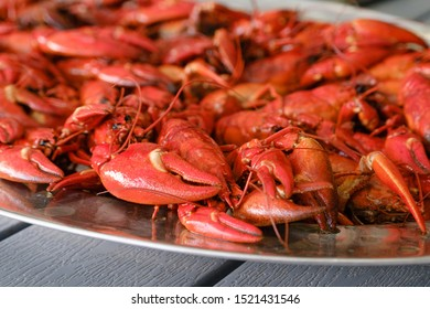 Boiled crawfish on plate ready to be eaten