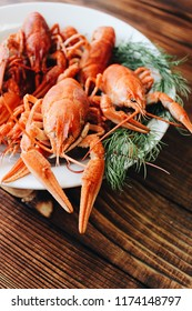 Boiled crayfish with dill and beer on wooden background. Fresh crayfish boiled with spices and dill served on a round dish. Red boiled crayfish or crawfish . Close up. Crayfish party.