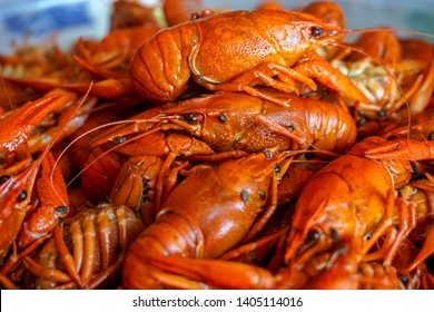 Boiled crayfish - a great beer snack
