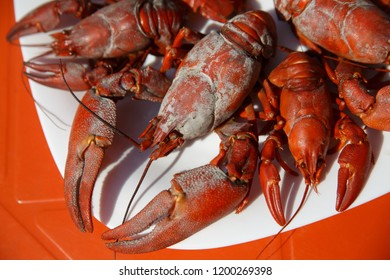 Dried Lobster Images, Stock Photos & Vectors | Shutterstock