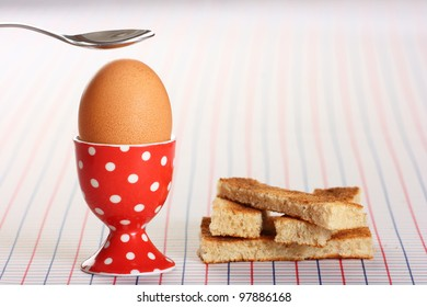 Boiled egg and toasted soldiers on a checked background