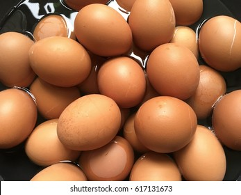 Boiled eggs in the pan.