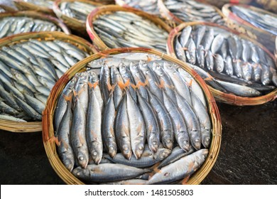Boiled fish basket. Seafood processing at fish market in Quy Nhon, south Vietnam