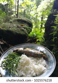 Boiled fried fish with white rice and ulam - traditional Malaysian herbs in nature.background