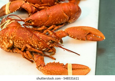 Boiled Maine lobster. Lobster. Lobster on plate.