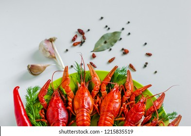 Boiled red crayfish or crawfish with dill herbs on white background. Close up. Crayfish party, restaurant, cafe, pub menu