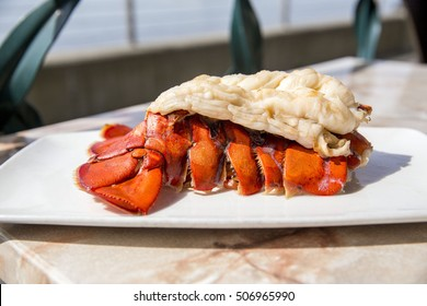 Boiled red lobster tail with white seafood meat