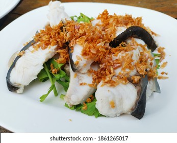 boiled red tail catfish with garlic .