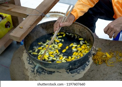 Boiling Silkworms' cocoons to separate silk threads and cocoon's thread was empty