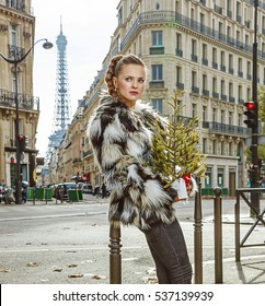 Boiling hot trendy winter in Paris. Portrait of relaxed modern fashion-monger with Christmas tree in Paris, France looking aside
