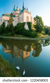 bojnice castle in the background with two swans in foreground