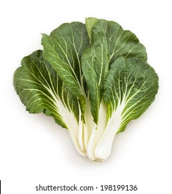 bok choy chinese cabbage leaves isolated