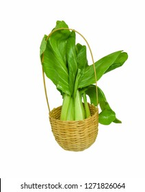 bok choy isolated / fresh green bok choy vegetable or chinese cabbage isolated on white background  other name Pok Choi or Pak Choi