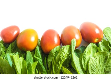 Bok choy and tomatoes on a white background. Concept of healthy food and healthy eating. Vegetarian. Vegan. Christmas color palette.