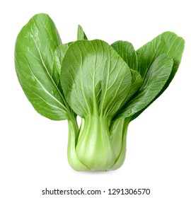 Bok choy vegetable isolated on white with clipping path