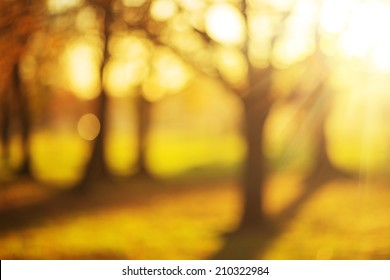 Bokeh autumn park background. Bright yellow and red sunny trees fall bokeh background.