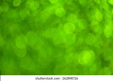 Bokeh green nature background.
