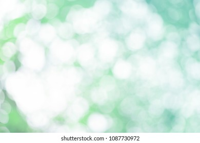 Bokeh leaf spring natural light eco lawn foliage background. Empty space concept for summer retro banner, website decoration style: bio ozone parchment. Top view green flora blur.