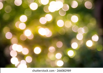 Bokeh light background of beautiful wedding garden at night / color tone tuned
