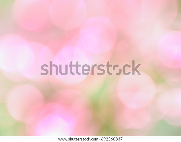 Bokeh Purple Pink background and Blurred background of Purple Pink color