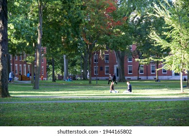 BOL, UNITED STATES - Jul 18, 2007: Courtyard of Harvard University with people sitting on the grass in the sun