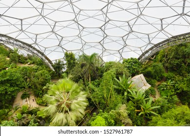Boldeva, Cornwall, UK - September 16 2019: The Eden Project looking down from the viewing platform in the rainforest biome. A popular visitor attraction with gardens in large domes