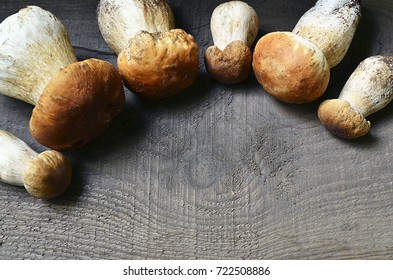 Boletus edulis mushrooms on old wooden background.Autumn Cep Mushrooms.