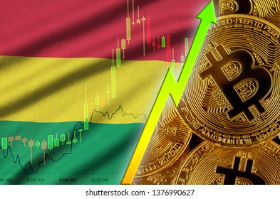 Bolivia flag and cryptocurrency growing trend with many golden bitcoins