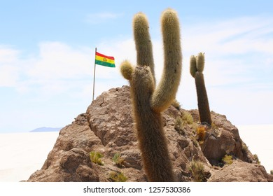 bolivian flag on Isla de Pescadores, Salt lake Uyuni in Bolivia. Salar de Uyuni is the biggest salt lake of the world situated in Bolivia.