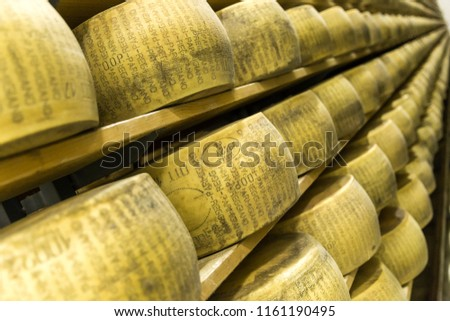 BOLOGNA , ITALY - MAY 02, 2018: Parmigiano Cheese factory production shelves with aging cheese in Italy, Bologna