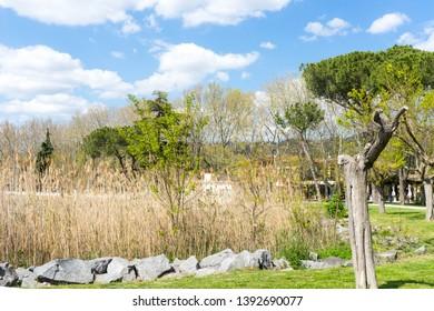 Bolsena Lake in Viterbo Province, Italy, Europe