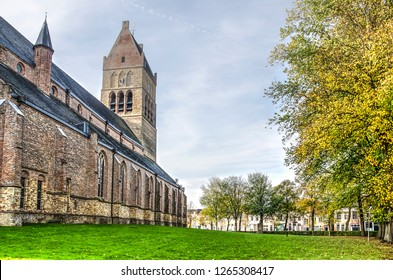 Bolsward, The Netherlands, November 4, 2018: Martini church with surrounding grass lawn and trees in autumn