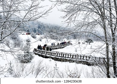 BOLU, TURKEY- JANUARY 13, 2019: Beautiful winter landscape with many snow and spruce trees. The Abant Lake Natural Park Karadeniz (Black Sea) Region with walking people. Holidays and outside activity.