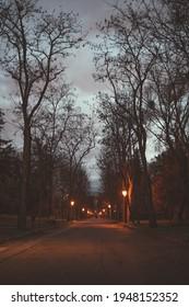 Bombilla's park at sunset Madrid
