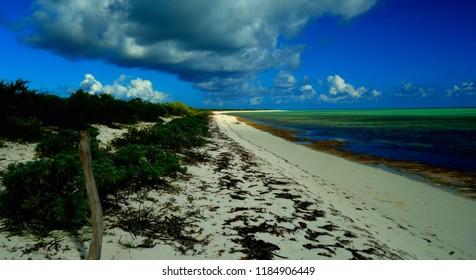 Bones Bight Beach in Anegada, British Virgin Islands.
