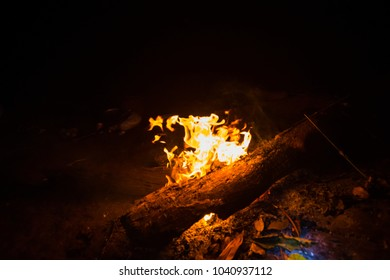 bonfire in camp