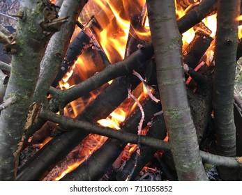 Bonfire in the grill with smoke. Bonfire close. Fire in nature. Birch wood burning in the fireplace. Background