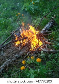 Bonfire on the grass. A bonfire from dried branches and logs burns on the grass at dusk. There is little translucent smoke over the fire.