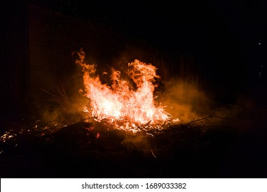 Bonfire on the street, burning branches and a tree, flame and sparks rise up.