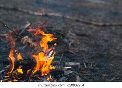 Bonfire in the spring on the nature