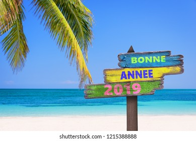 Bonne annee 2019 (meaning happy new year in French) on a colored wooden direction signs, beach and palm tree background