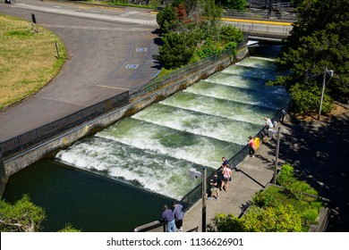BONNEVILLE DAM, OREGON - JUNE 24, 2018 - Fish ladders aid salmon on their upstream migration at the Bonneville Dam on the Columbia River in  Oregon